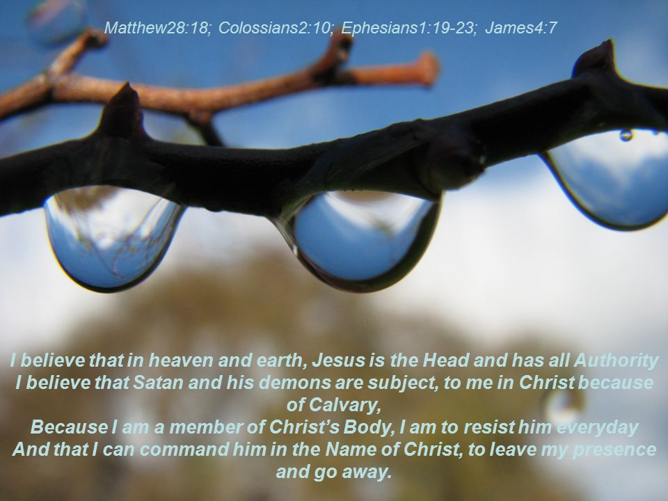 I believe that in heaven and earth, Jesus is the Head and has all Authority I believe that Satan and his demons are subject, to me in Christ because o