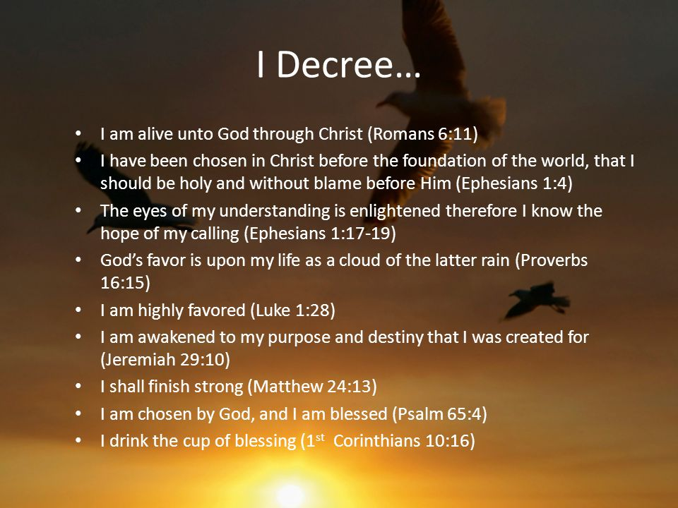 I Decree… I am alive unto God through Christ (Romans 6:11) I have been chosen in Christ before the foundation of the world, that I should be holy and without blame before Him (Ephesians 1:4) The eyes of my understanding is enlightened therefore I know the hope of my calling (Ephesians 1:17-19) God's favor is upon my life as a cloud of the latter rain (Proverbs 16:15) I am highly favored (Luke 1:28) I am awakened to my purpose and destiny that I was created for (Jeremiah 29:10) I shall finish strong (Matthew 24:13) I am chosen by God, and I am blessed (Psalm 65:4) I drink the cup of blessing (1 st Corinthians 10:16)