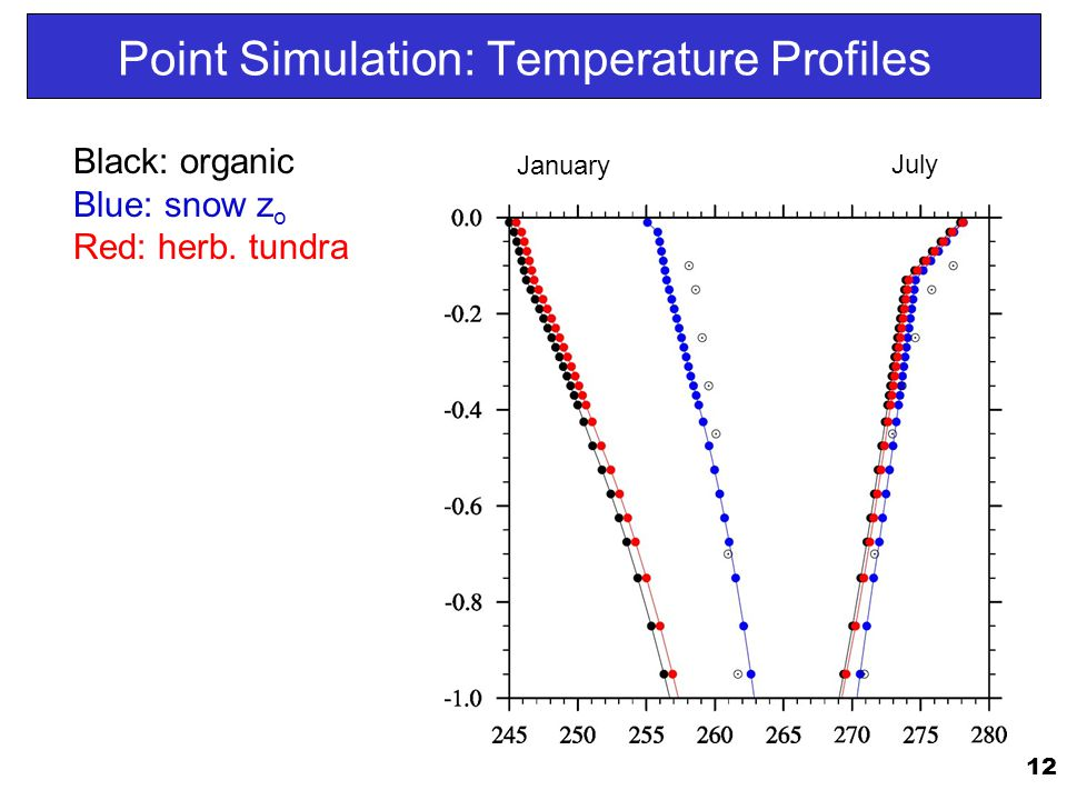 12 Point Simulation: Temperature Profiles July January Black: organic Blue: snow z o Red: herb.
