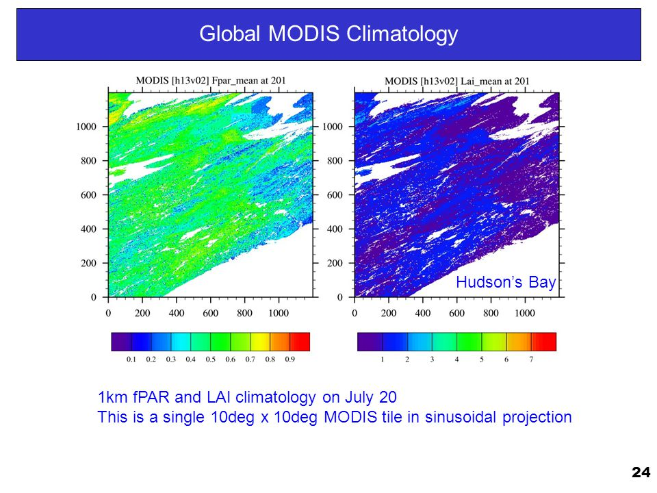24 Global MODIS Climatology 1km fPAR and LAI climatology on July 20 This is a single 10deg x 10deg MODIS tile in sinusoidal projection Hudson's Bay