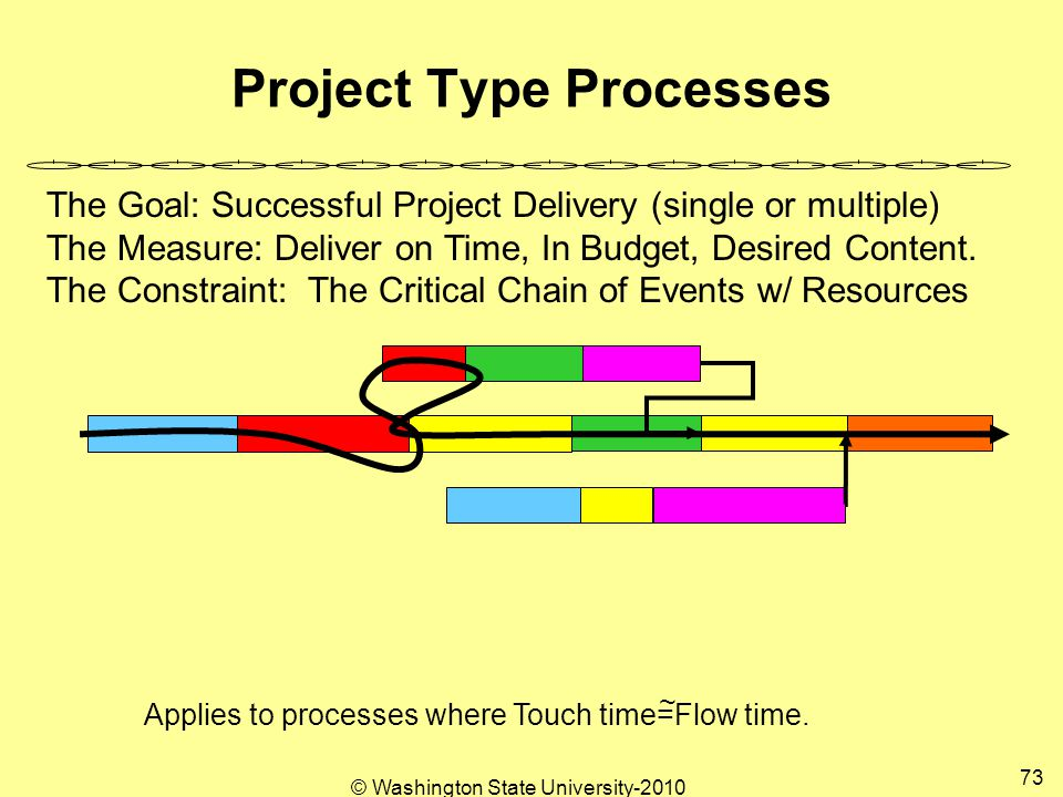 Project Type Processes The Goal: Successful Project Delivery (single or multiple) The Measure: Deliver on Time, In Budget, Desired Content.