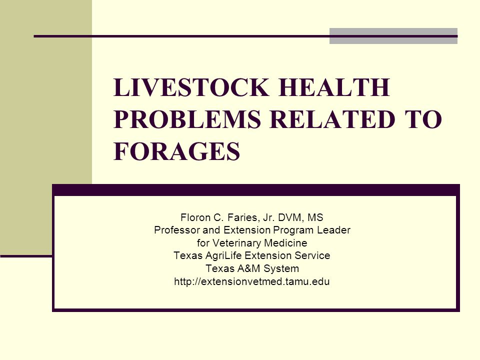 LIVESTOCK HEALTH PROBLEMS RELATED TO FORAGES Floron C. Faries, Jr. DVM, MS Professor and Extension Program Leader for Veterinary Medicine Texas AgriLi