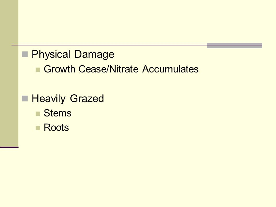 Physical Damage Growth Cease/Nitrate Accumulates Heavily Grazed Stems Roots