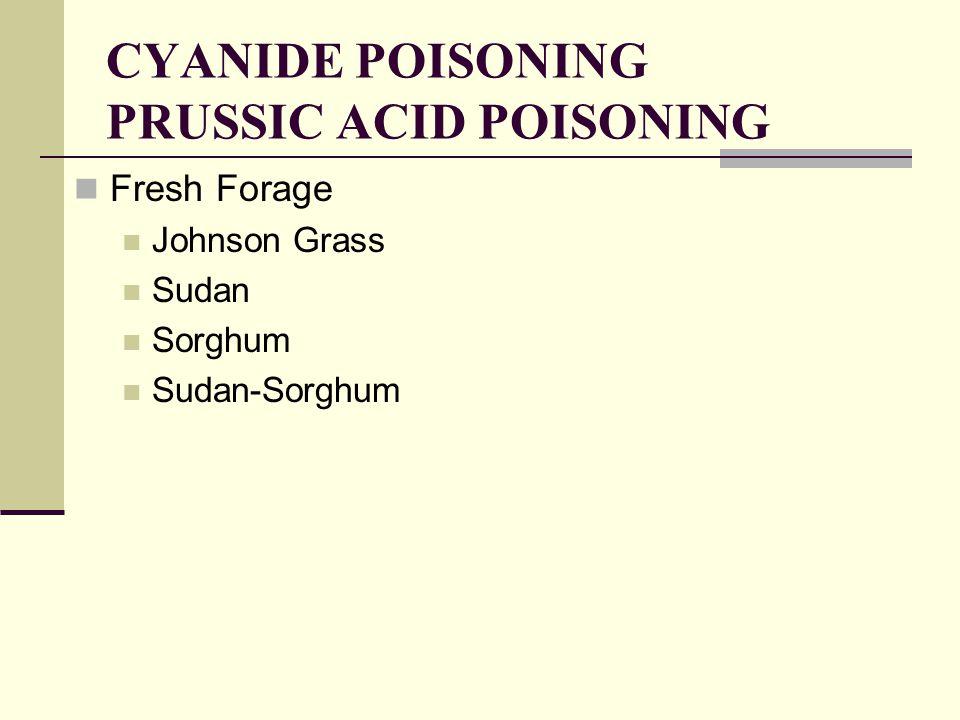 CYANIDE POISONING PRUSSIC ACID POISONING Fresh Forage Johnson Grass Sudan Sorghum Sudan-Sorghum