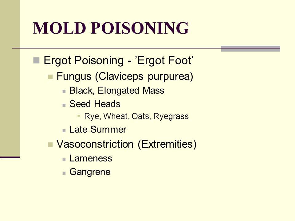 MOLD POISONING Ergot Poisoning - 'Ergot Foot' Fungus (Claviceps purpurea) Black, Elongated Mass Seed Heads  Rye, Wheat, Oats, Ryegrass Late Summer Vasoconstriction (Extremities) Lameness Gangrene