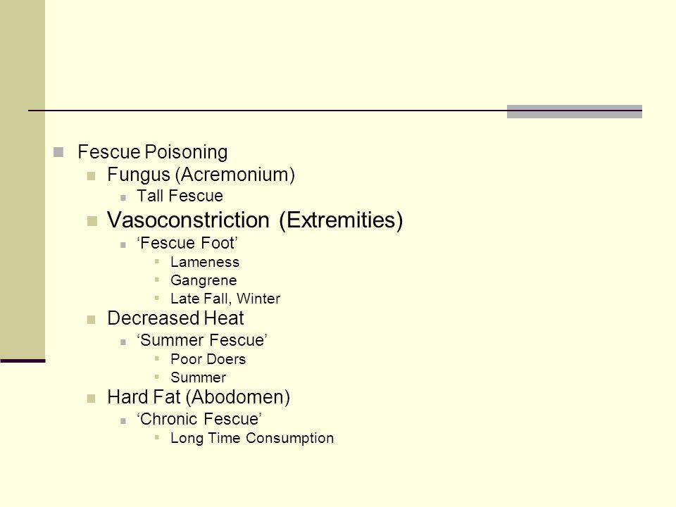 Fescue Poisoning Fungus (Acremonium) Tall Fescue Vasoconstriction (Extremities) 'Fescue Foot'  Lameness  Gangrene  Late Fall, Winter Decreased Heat