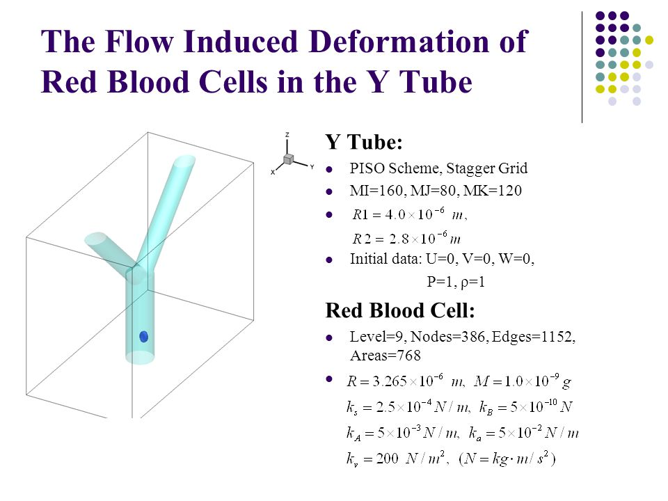 The Flow Induced Deformation of Red Blood Cells in the Y Tube Y Tube: PISO Scheme, Stagger Grid MI=160, MJ=80, MK=120 Initial data: U=0, V=0, W=0, P=1, ρ=1 Red Blood Cell: Level=9, Nodes=386, Edges=1152, Areas=768