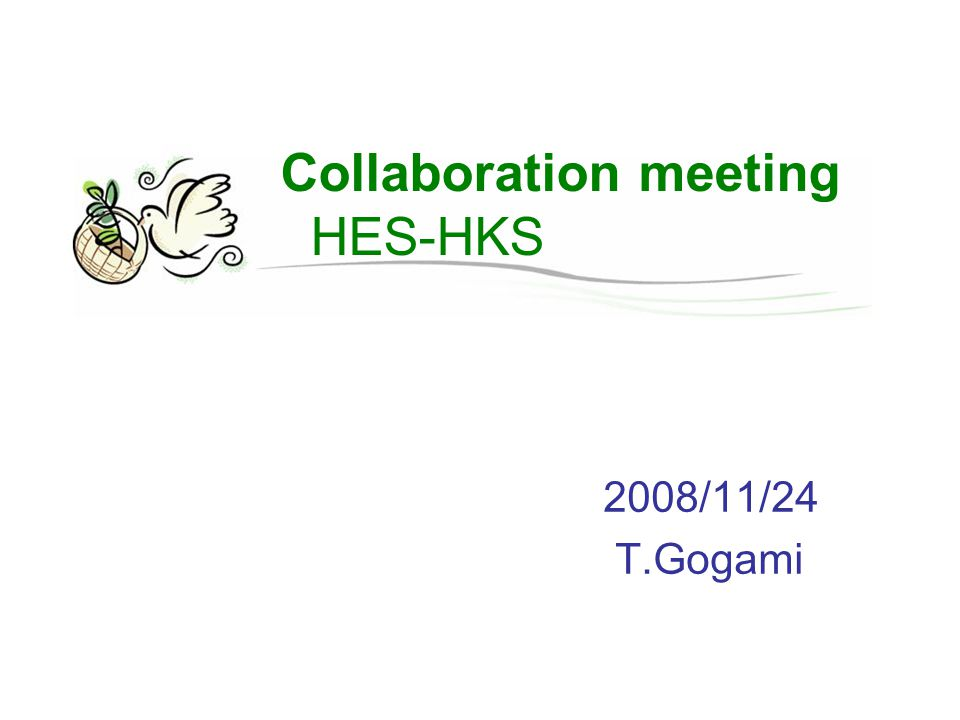 Collaboration meeting HES-HKS 2008/11/24 T.Gogami