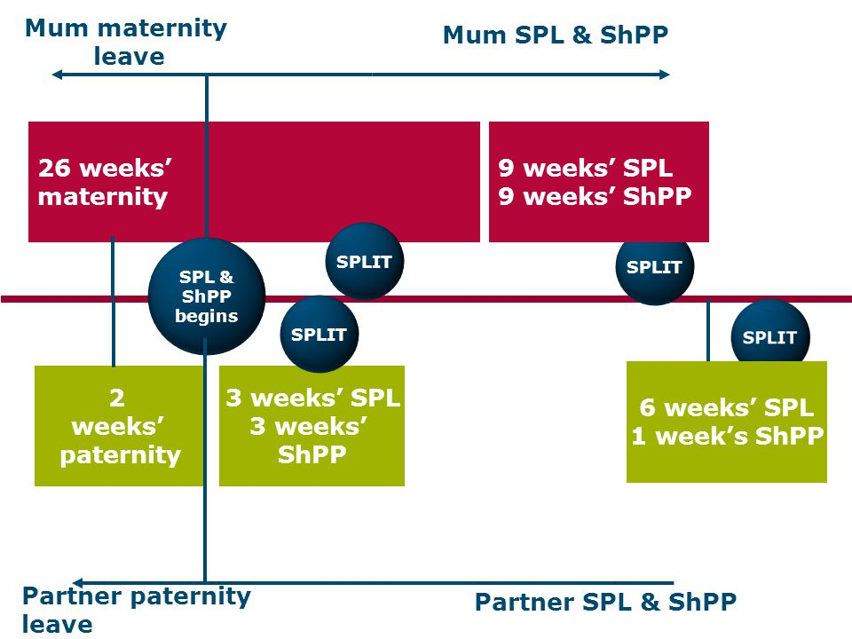 2 weeks' paternity 3 weeks' SPL 3 weeks' ShPP 26 weeks' maternity SPL & ShPP begins Mum maternity leave Mum SPL & ShPP Partner SPL & ShPP SPLIT SPLIT
