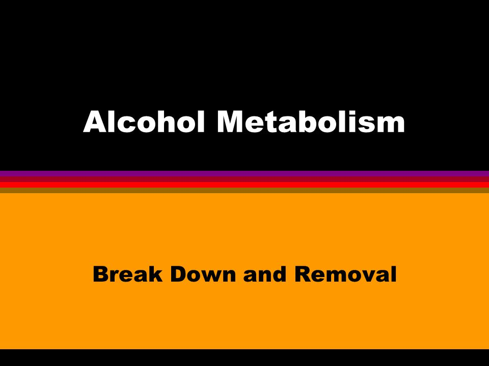Alcohol Metabolism Break Down and Removal