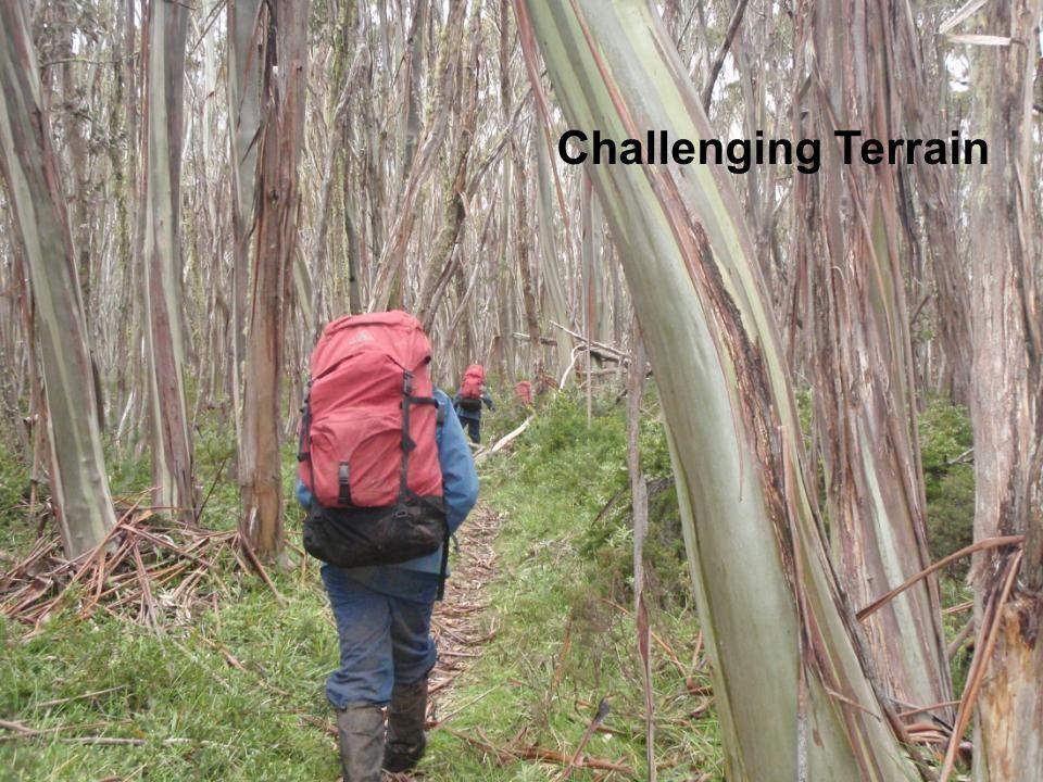 Challenging Terrain