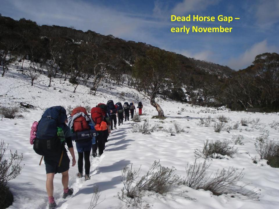 Dead Horse Gap – early November