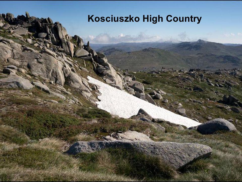 Kosciuszko High Country