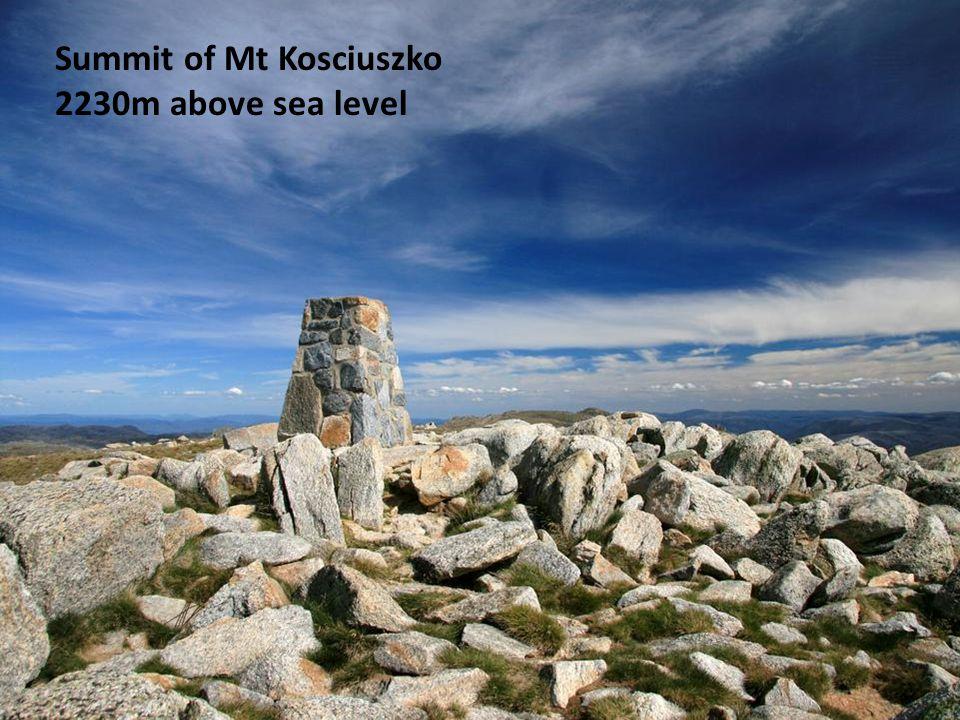 Summit of Mt Kosciuszko 2230m above sea level