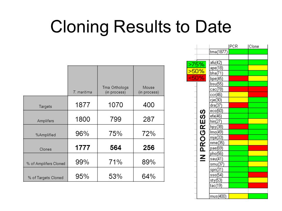 Cloning Results to Date T.