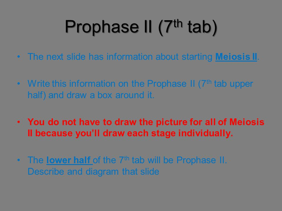 Prophase II (7 th tab) The next slide has information about starting Meiosis II. Write this information on the Prophase II (7 th tab upper half) and d