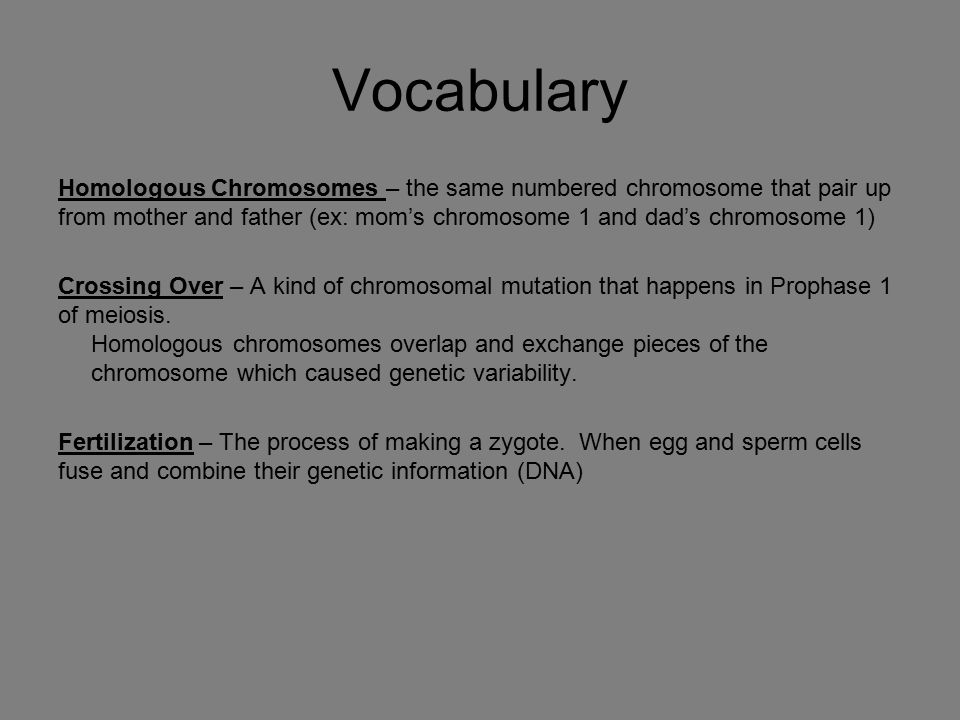 Vocabulary Homologous Chromosomes – the same numbered chromosome that pair up from mother and father (ex: mom's chromosome 1 and dad's chromosome 1) C