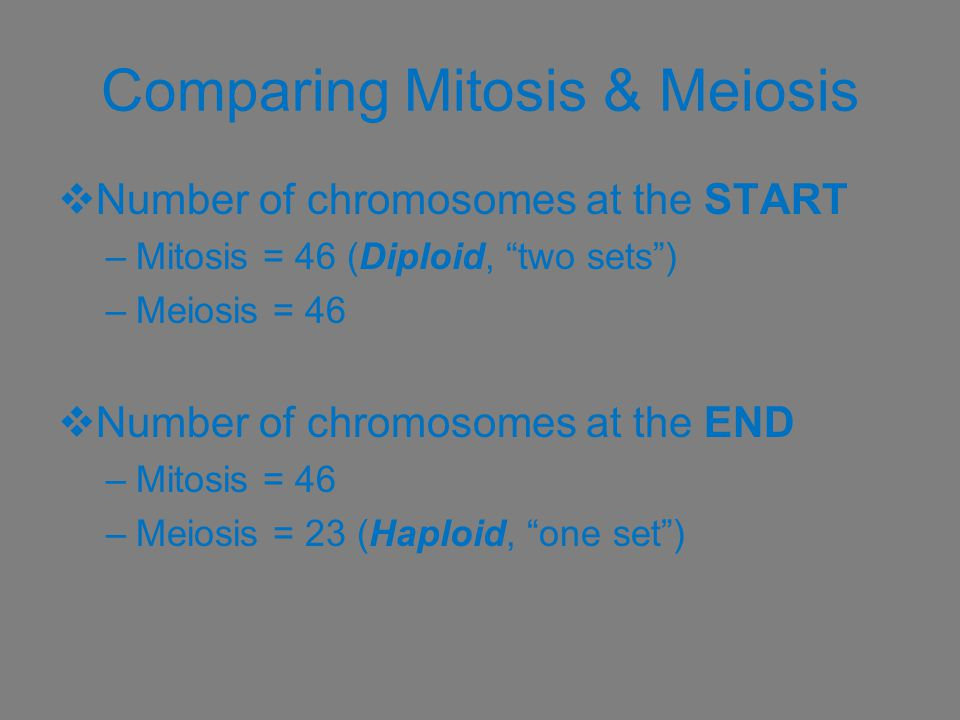 """Comparing Mitosis & Meiosis  Number of chromosomes at the START –Mitosis = 46 (Diploid, """"two sets"""") –Meiosis = 46  Number of chromosomes at the END"""