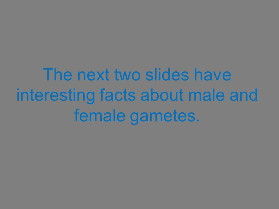 The next two slides have interesting facts about male and female gametes.