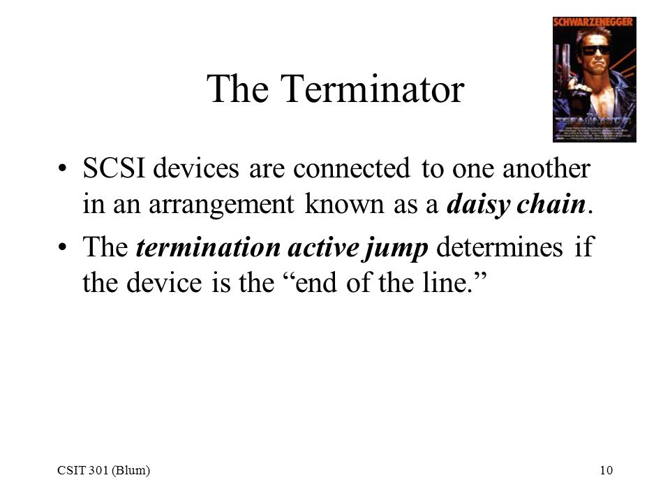 CSIT 301 (Blum)10 The Terminator SCSI devices are connected to one another in an arrangement known as a daisy chain.