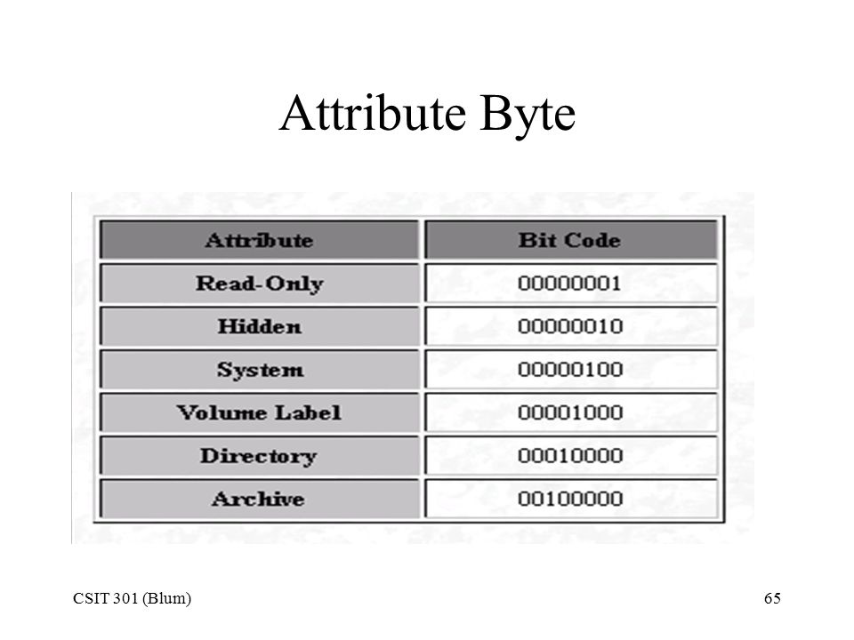 CSIT 301 (Blum)65 Attribute Byte