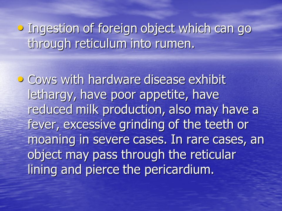 Ingestion of foreign object which can go through reticulum into rumen.