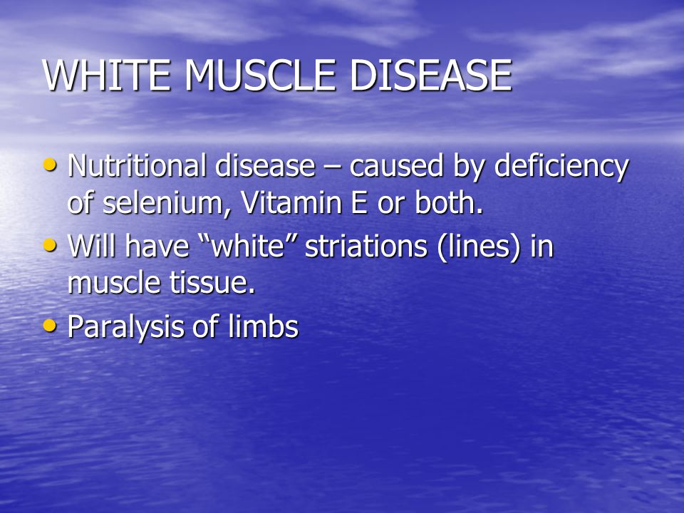 WHITE MUSCLE DISEASE Nutritional disease – caused by deficiency of selenium, Vitamin E or both.
