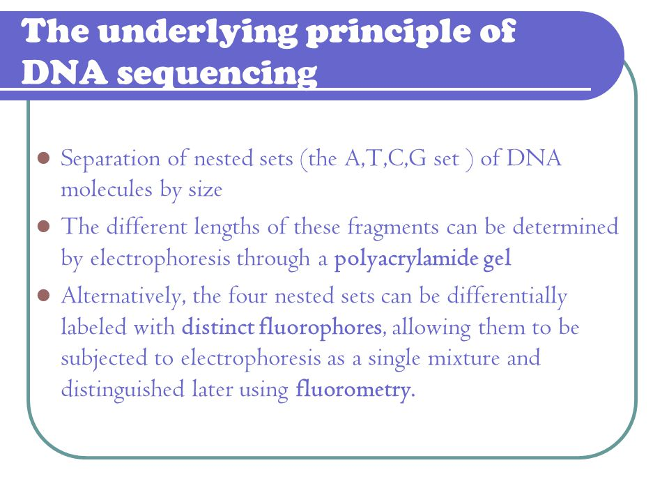 The underlying principle of DNA sequencing Separation of nested sets (the A,T,C,G set ) of DNA molecules by size The different lengths of these fragme