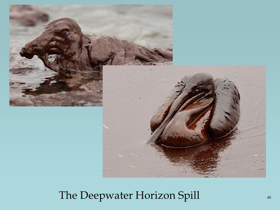 The Deepwater Horizon Spill 48