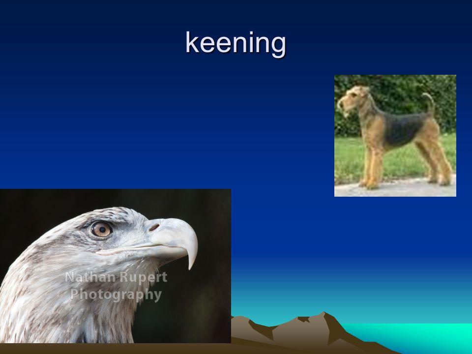 keening