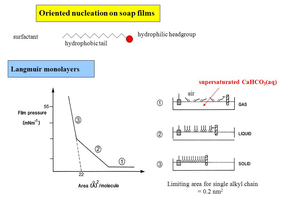 Oriented nucleation on soap films surfactant hydrophobic tail hydrophilic headgroup Langmuir monolayers air supersaturated CaHCO 3 (aq) Limiting area for single alkyl chain = 0.2 nm 2