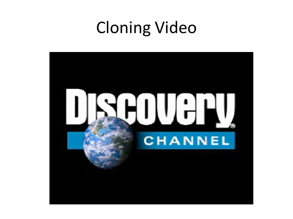 Cloning Video