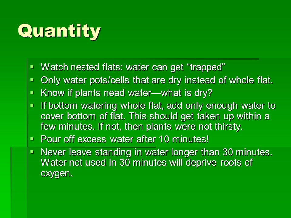 Quantity  Watch nested flats: water can get trapped  Only water pots/cells that are dry instead of whole flat.