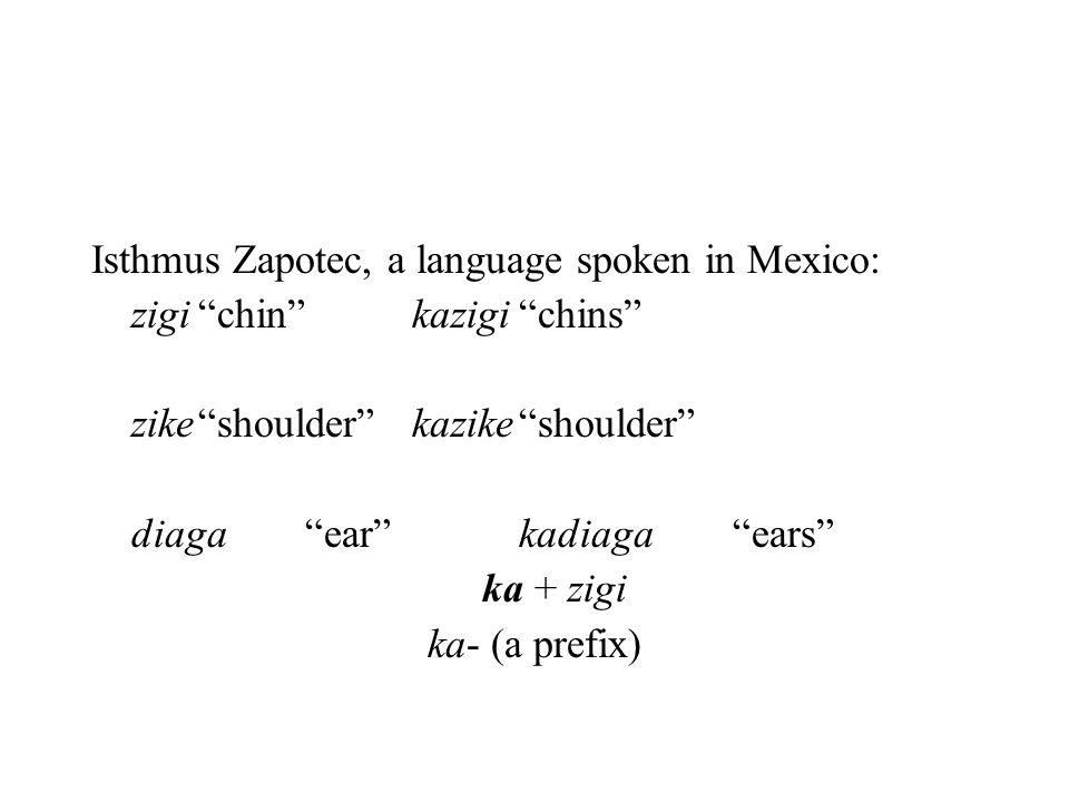"Isthmus Zapotec, a language spoken in Mexico: zigi""chin""kazigi""chins"" zike""shoulder""kazike""shoulder"" diaga""ear""kadiaga""ears"" ka + zigi ka- (a prefix)"