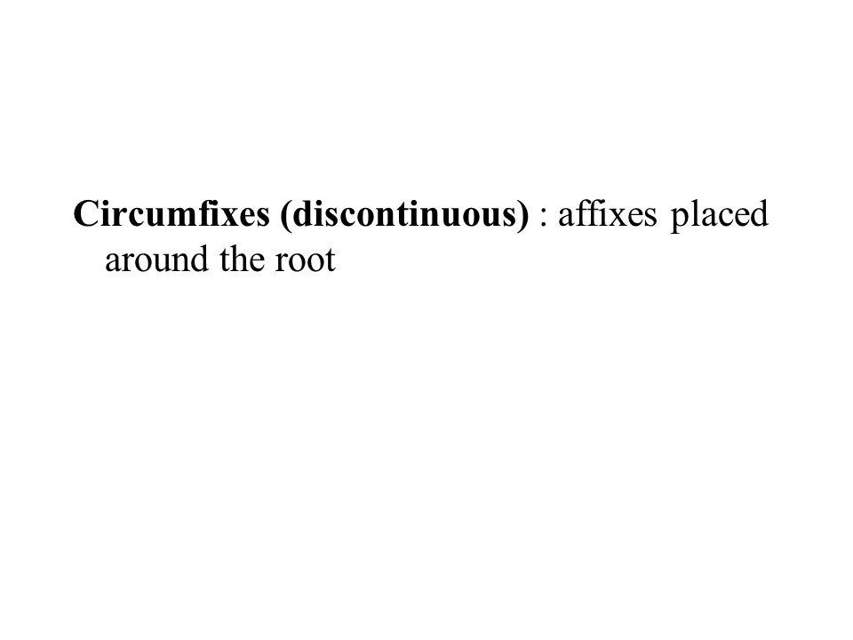 Circumfixes (discontinuous) : affixes placed around the root