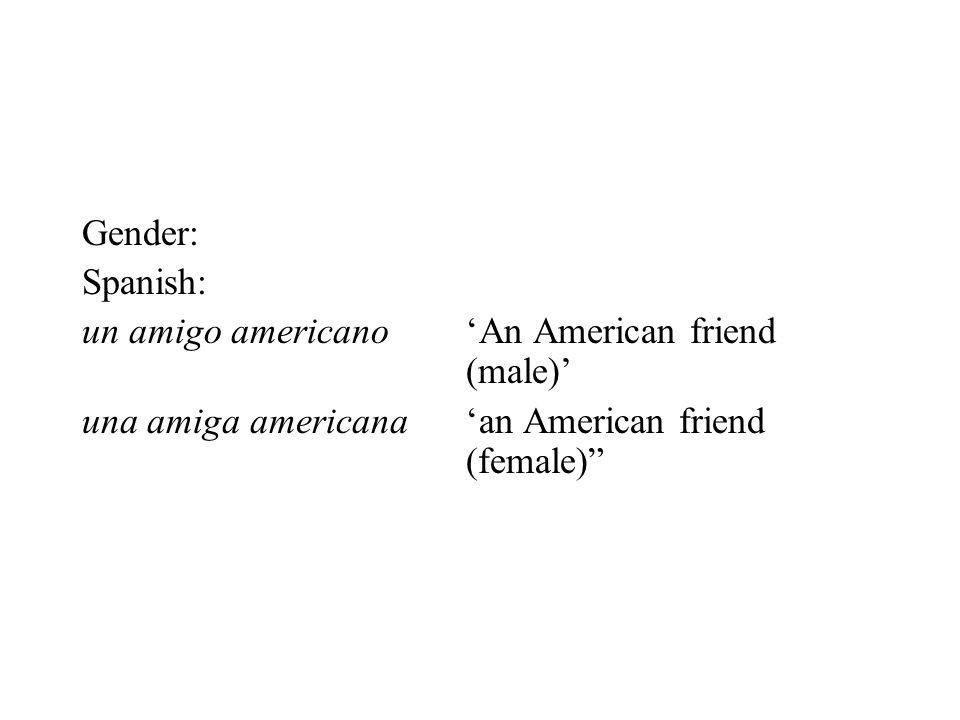 "Gender: Spanish: un amigo americano'An American friend (male)' una amiga americana'an American friend (female)"""