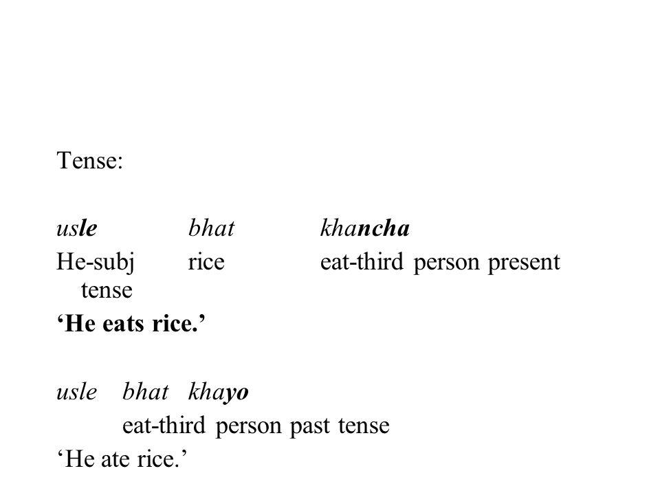 Tense: uslebhatkhancha He-subjriceeat-third person present tense 'He eats rice.' usle bhatkhayo eat-third person past tense 'He ate rice.'