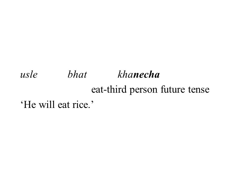 uslebhat khanecha eat-third person future tense 'He will eat rice.'
