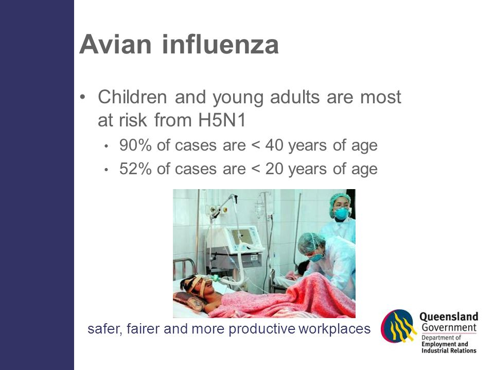 safer, fairer and more productive workplaces Avian influenza Children and young adults are most at risk from H5N1 90% of cases are < 40 years of age 52% of cases are < 20 years of age