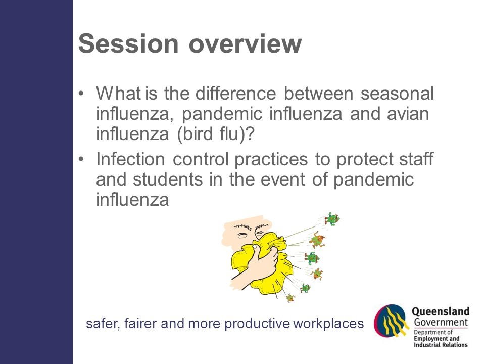 safer, fairer and more productive workplaces Session overview What is the difference between seasonal influenza, pandemic influenza and avian influenza (bird flu).
