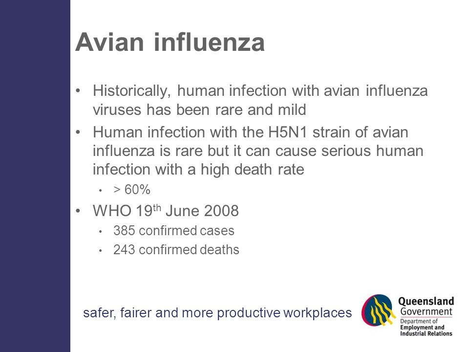 safer, fairer and more productive workplaces Avian influenza Historically, human infection with avian influenza viruses has been rare and mild Human infection with the H5N1 strain of avian influenza is rare but it can cause serious human infection with a high death rate > 60% WHO 19 th June 2008 385 confirmed cases 243 confirmed deaths