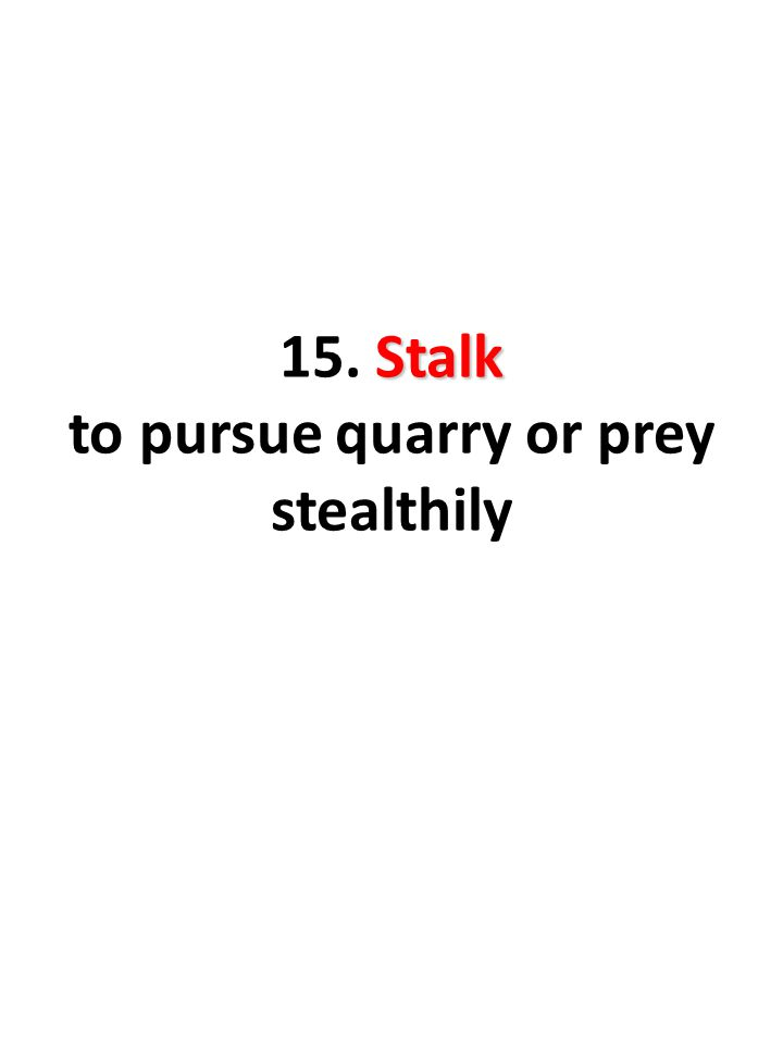 Stalk 15. Stalk to pursue quarry or prey stealthily