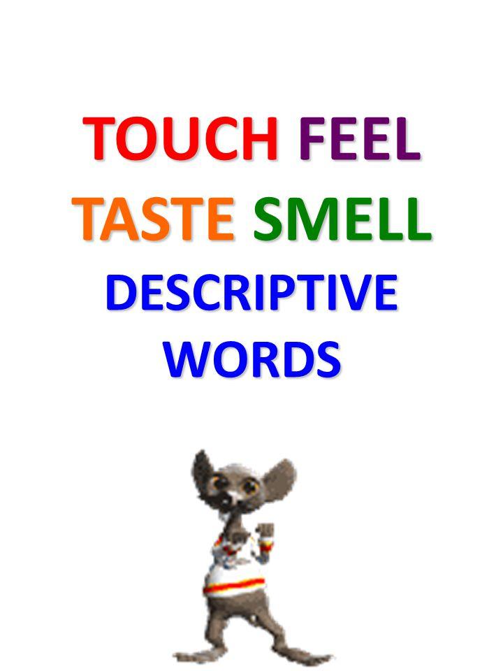 TOUCH FEEL TASTE SMELL DESCRIPTIVE WORDS