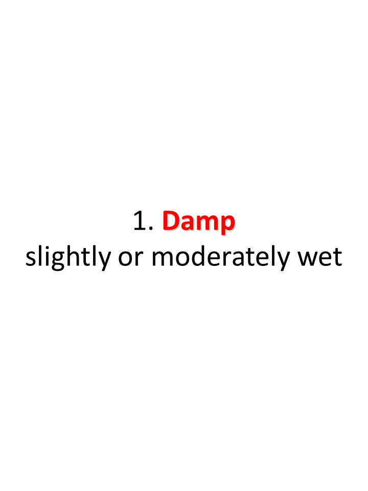 Damp 1. Damp slightly or moderately wet