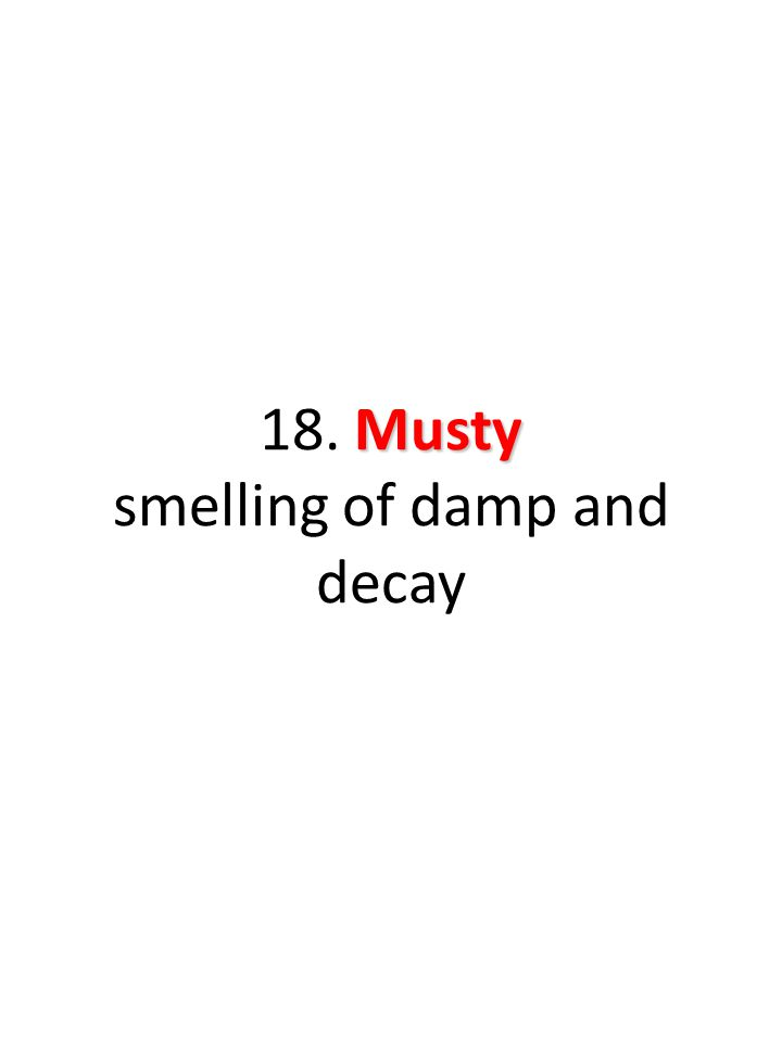 Musty 18. Musty smelling of damp and decay