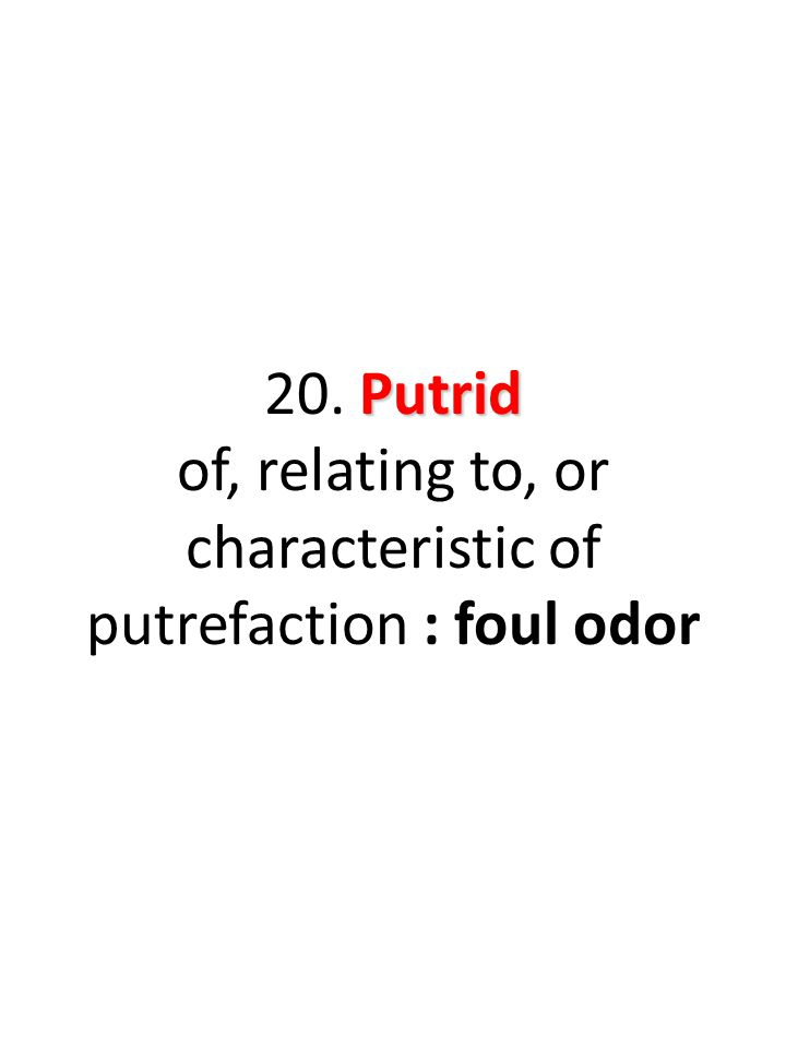 Putrid 20. Putrid of, relating to, or characteristic of putrefaction : foul odor