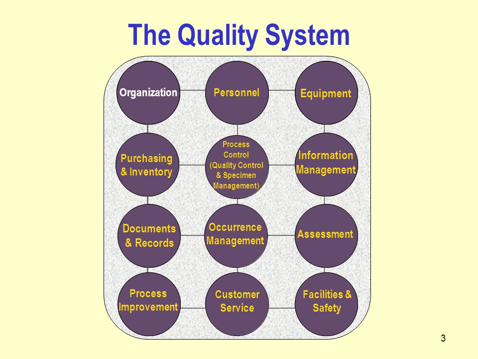 3 The Quality System Process Control (Quality Control & Specimen Management) Purchasing & Inventory Assessment Occurrence Management Information Management Process Improvement Customer Service Facilities & Safety Organization Personnel Equipment Documents & Records