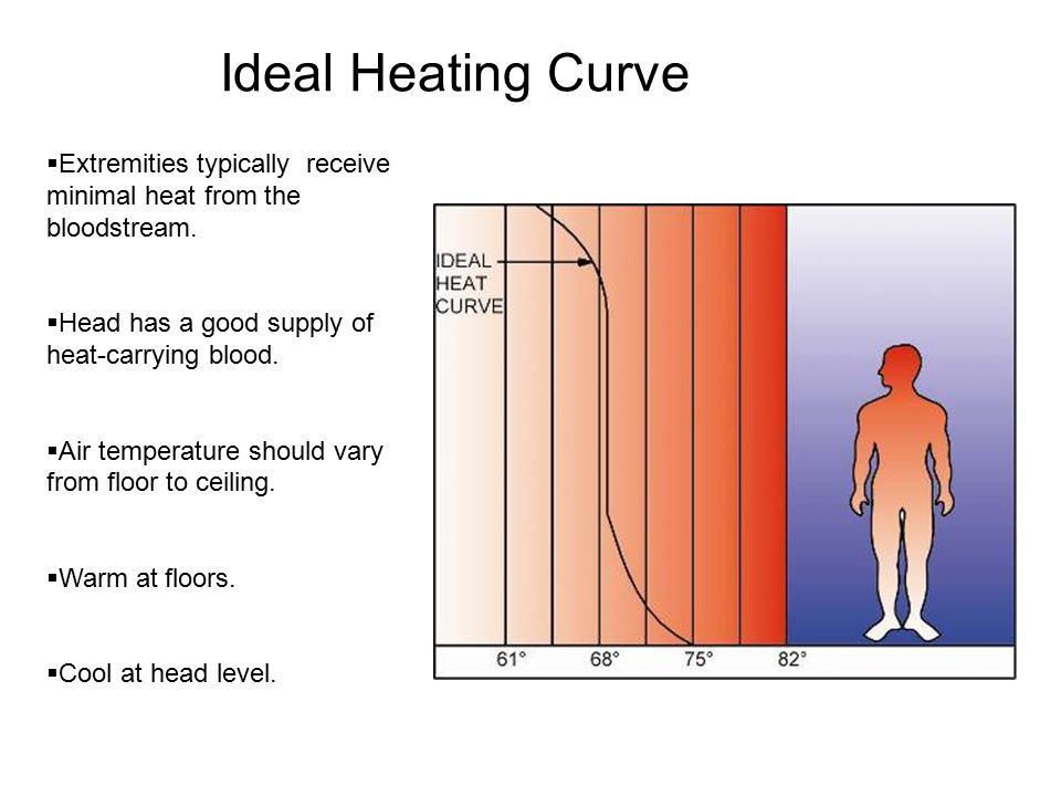 Ideal Heating Curve  Extremities typically receive minimal heat from the bloodstream.