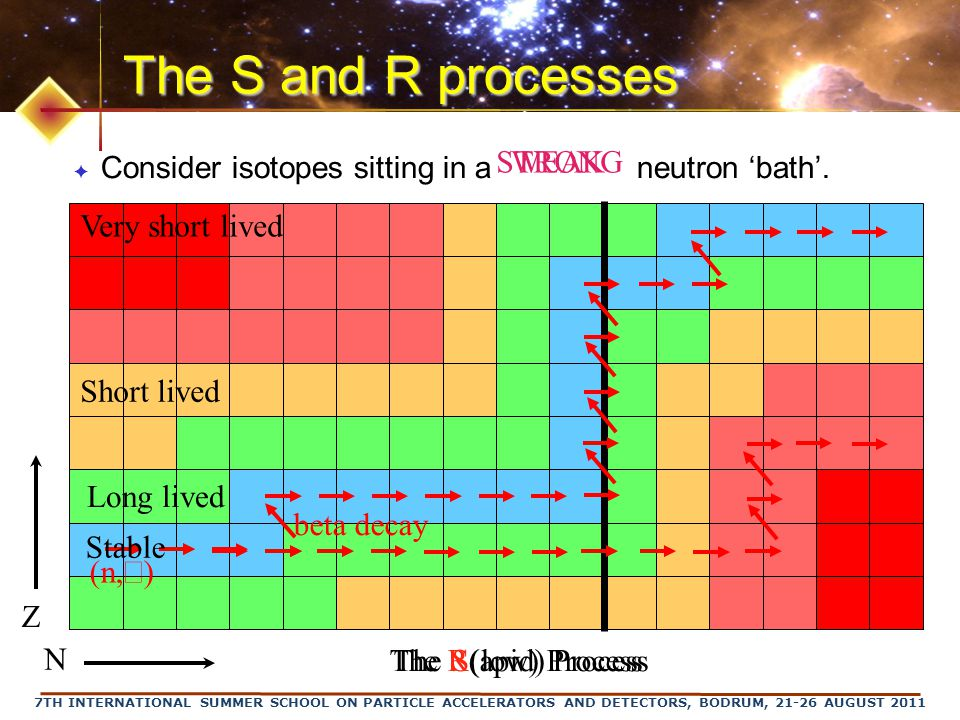 7TH INTERNATIONAL SUMMER SCHOOL ON PARTICLE ACCELERATORS AND DETECTORS, BODRUM, 21-26 AUGUST 2011 The S and R processes ✦ Consider isotopes sitting in a neutron 'bath'.