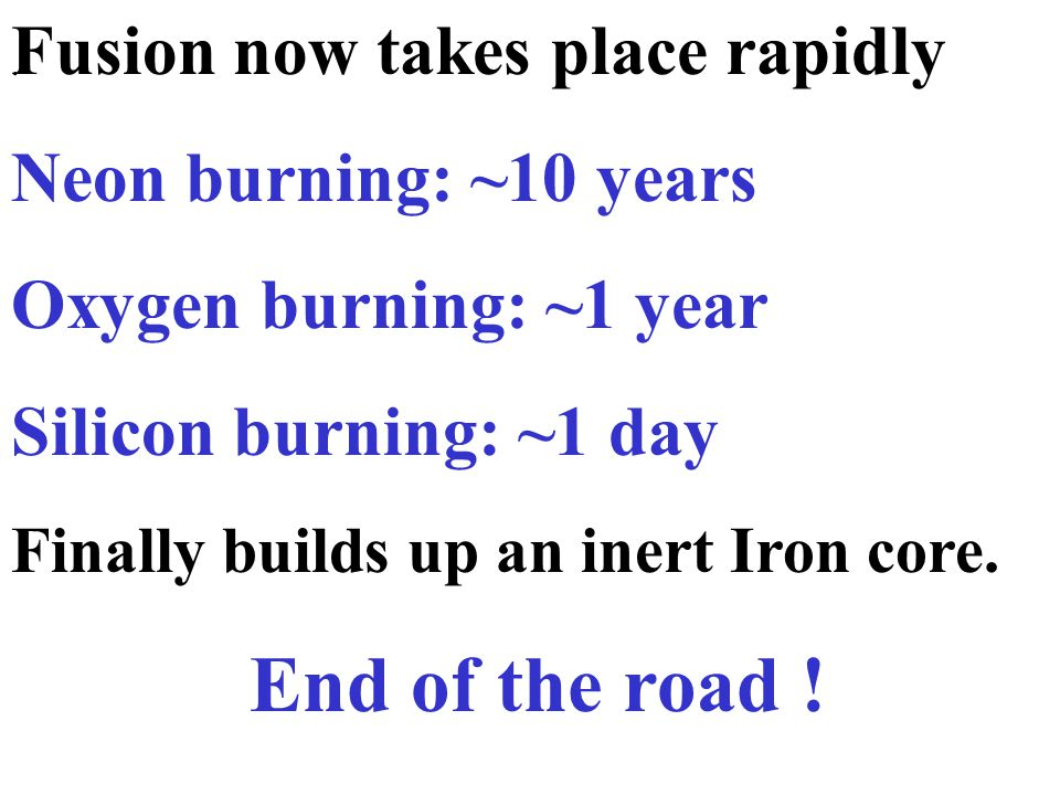 . Fusion now takes place rapidly Neon burning: ~10 years Oxygen burning: ~1 year Silicon burning: ~1 day Finally builds up an inert Iron core. End of